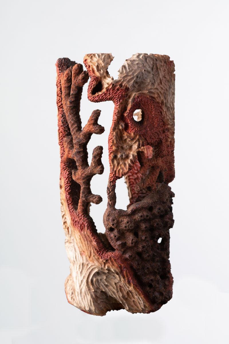 Riccardo Masini Wood Sculpture Coral Collection Ceratonia silique Italiano Plurale