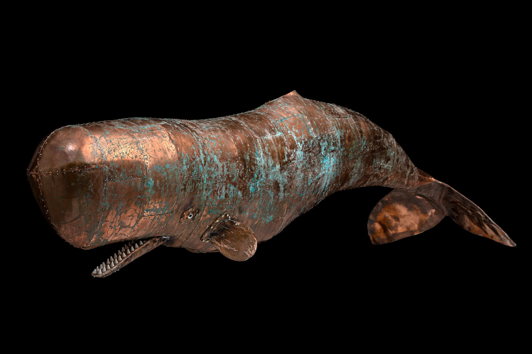 Stefano Prina Sculpture Copper Whale english weel nailed Italiano Plurale